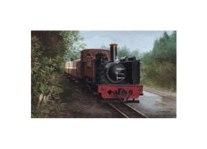 The Prince of Wales Rheidol Valley Railway - © Alan Percy Walker