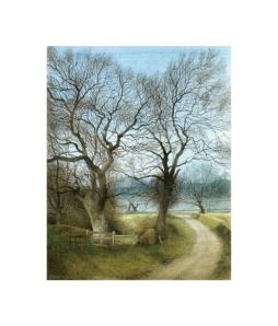 Landscape from Llanymynech
